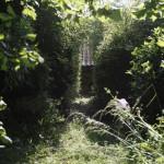 2015-06-11 marcilly - jardin