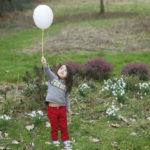 2017-02-25 jardin aglae