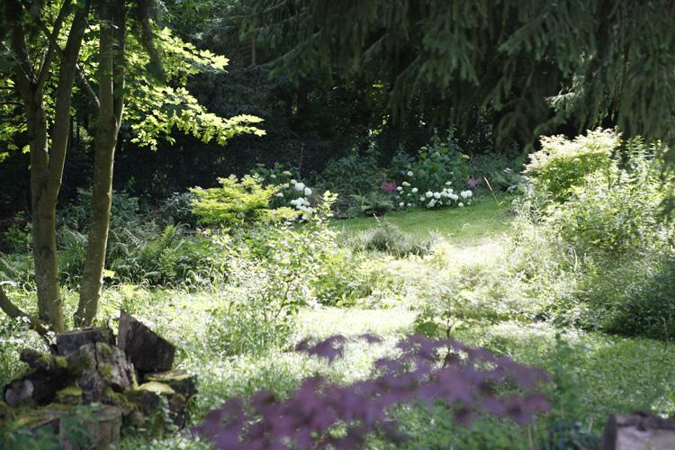 2018-06-23 jardin