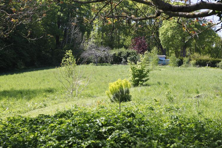 2019-04-30 jardin