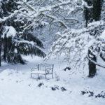 2018-02-07 neige