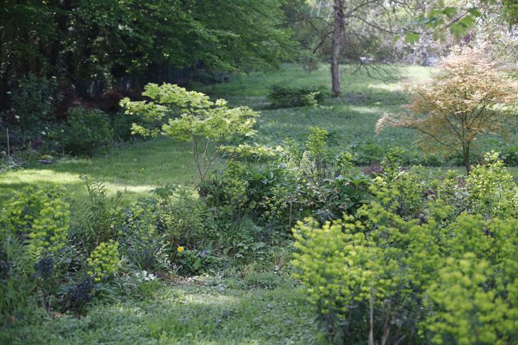 2020-04-19 jardin