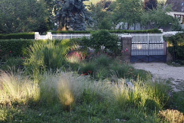 2020-06-07 jardin